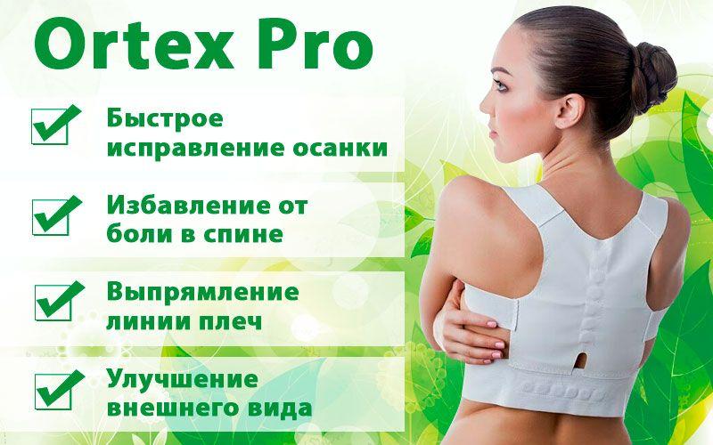 Ortex Pro (Ортекс Про) - магнитный комплекс для спины свойства