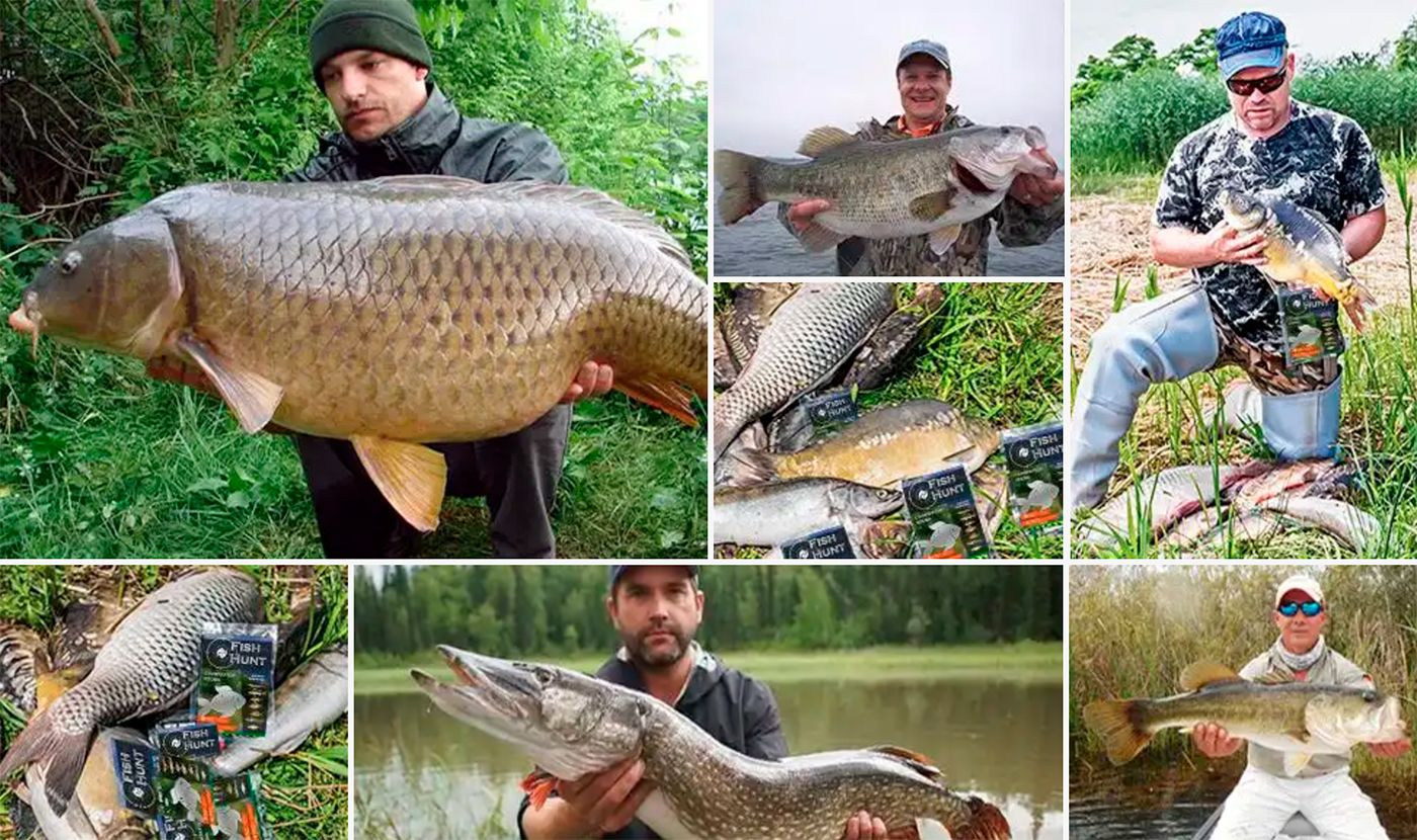 Fish Hunt - стимулятор улова