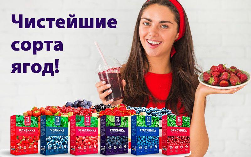 купить Калинка малинка - ягоды в домашних условиях