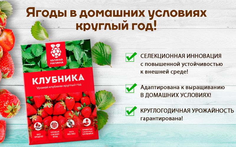 Калинка малинка - ягоды в домашних условиях свойства
