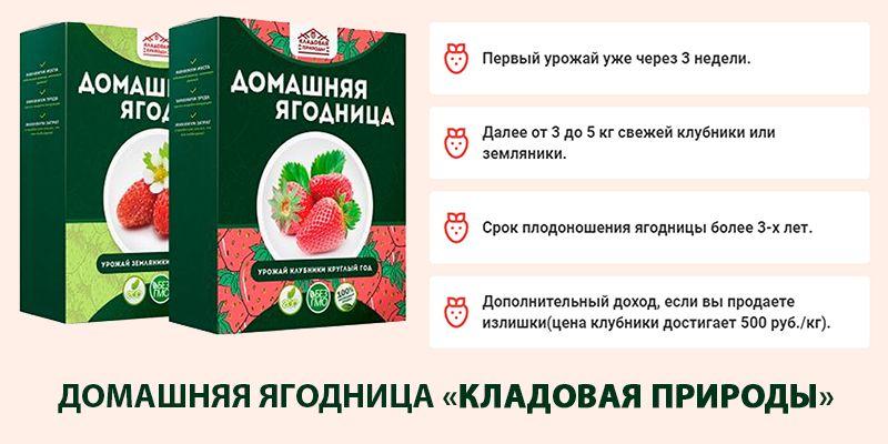 """Домашняя ягодница """"Кладовая природы"""" свойства"""