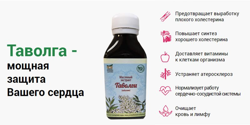 Масляный экстракт Таволги - средство от холестерина свойства