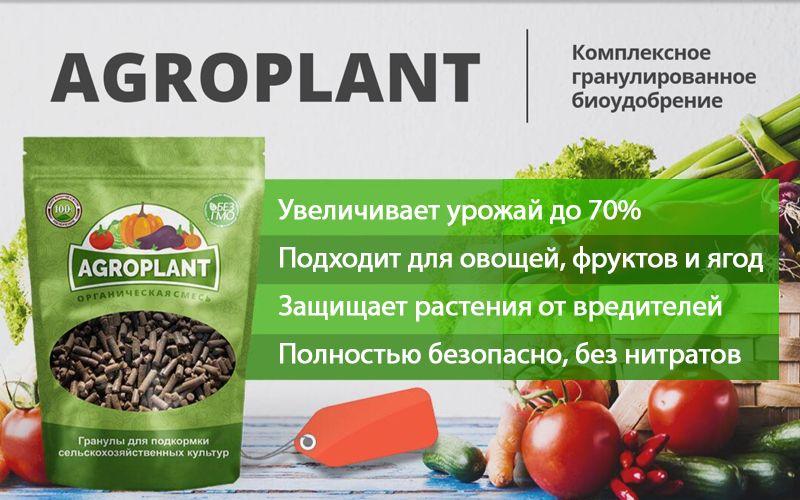 Agroplant (Агроплант) - комплексное гранулированное биоудобрение свойства