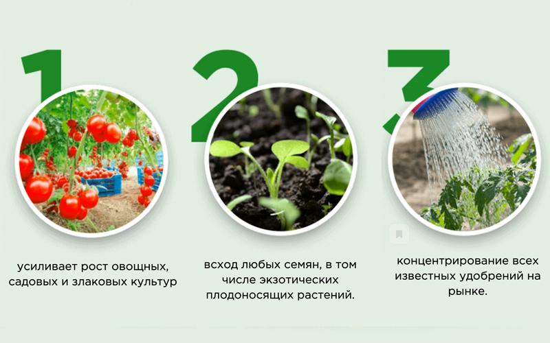 усиление роста растений