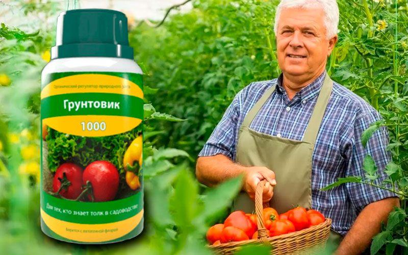 купить Грунтовик-1000 - эффективное биоудобрение