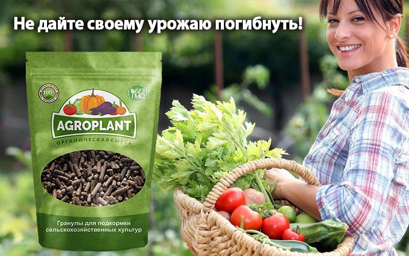 купить Agroplant (Агроплант) - комплексное гранулированное биоудобрение