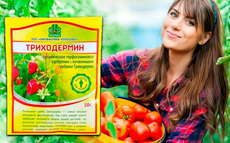 купить Триходермин - удобрение для почвы