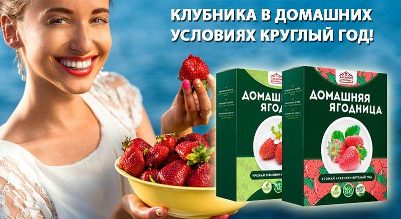 """купить Домашняя ягодница """"Кладовая природы"""""""