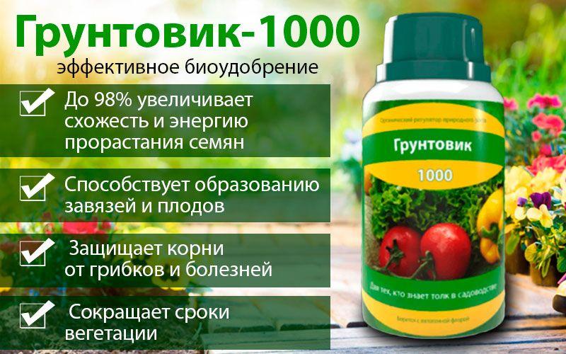 Грунтовик-1000 - эффективное биоудобрение свойства
