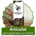 Articulat (Артикулат) - гель для здоровья суставов