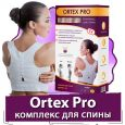 Ortex Pro (Ортекс Про) - магнитный комплекс для спины