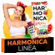 Harmonica Linea (Гармоника Линеа) - средство для похудения