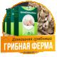 Домашняя грибница – шампиньоны «Грибная ферма»