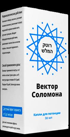 Купить вектор Соломона