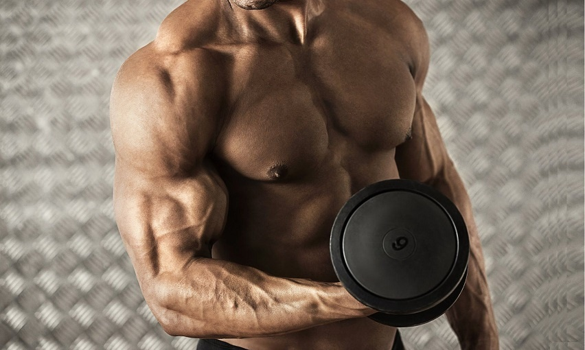 Средства для роста мышц
