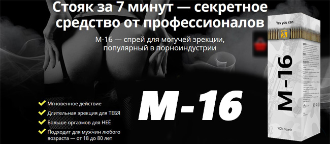 мотивация m16